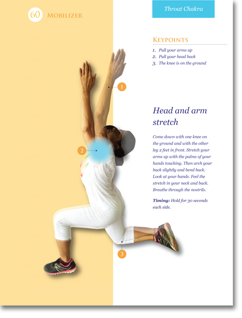 SAMPLE PAGE OF THE MOBILIZER - FLEXIBILITY TRAINING