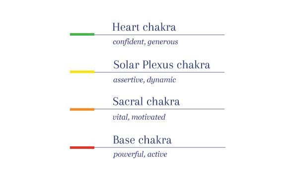 holistic cardio training