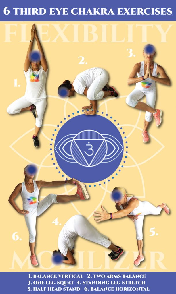 Free holistic exercise charts for flexibility training